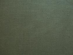 Wildseide R-23808 2